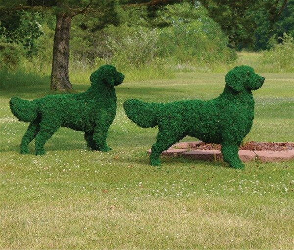 Amazing Animal Topiary Ideas For Your Gardens