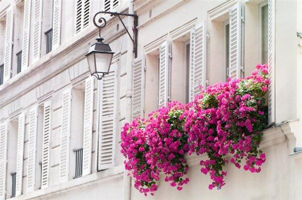 The Best 21 Dazzling Balcony Gardens That You Should See