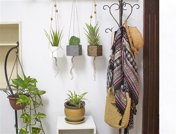 Macrame Plant Hangers: Fantastic DIY Ideas