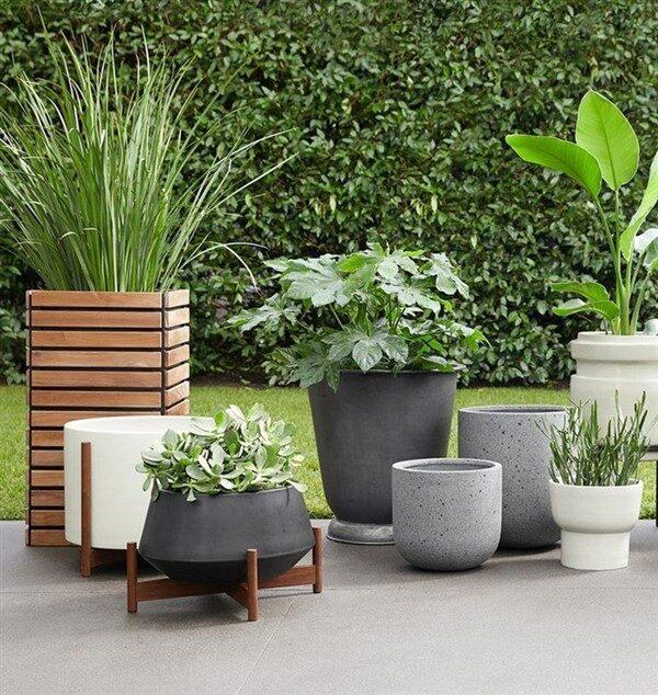 Big Concrete Planters: Modern Outdoor Pots