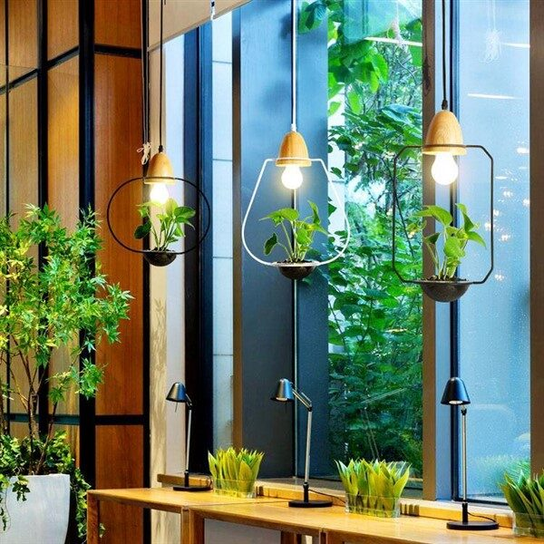 Light Hanging Lamp Planter Suitable For Both Home and Office