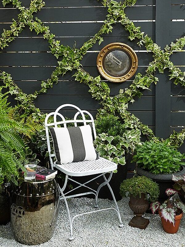 Amazing Balcony Ivy Ideas