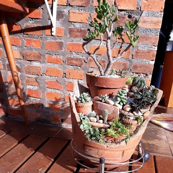 Charming Fairy Garden Ideas with Broken Pots