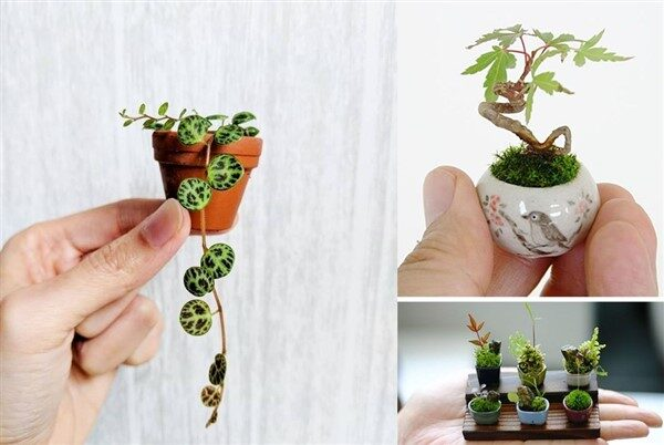 Mini Planters Made from Clay