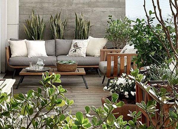 Balcony Garden: Love of Greenery