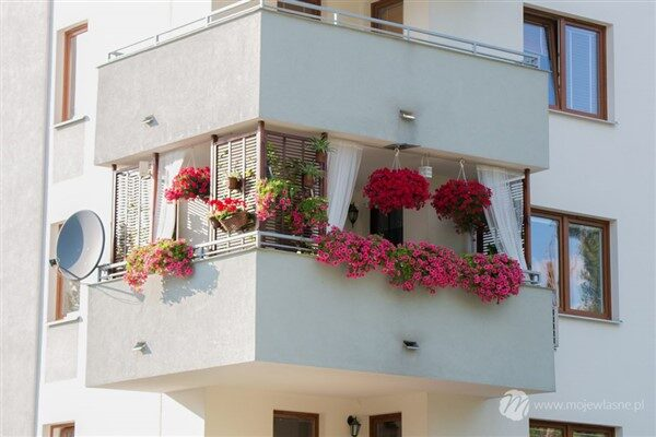 Wonderful Balcony Hanging Basket Planters