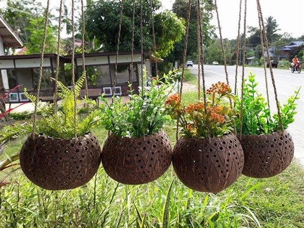 Beautiful Coconut Planters: An Exotic Decor For Balconies