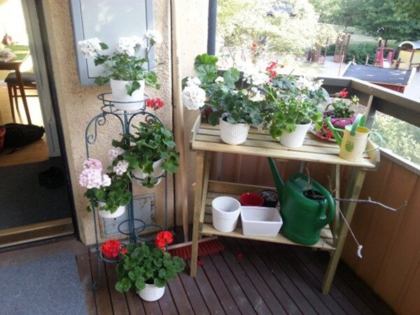 Functional Balcony Plant Stand Ideas for Plants & Flowers