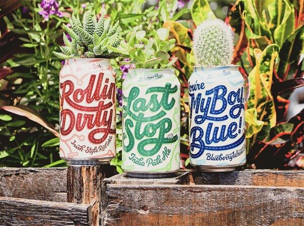 Portative Soda Can Planters: The Irresistible Power Of Recycling
