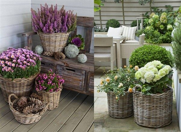 Round Wicker Basket Ideas as Colorful Planters