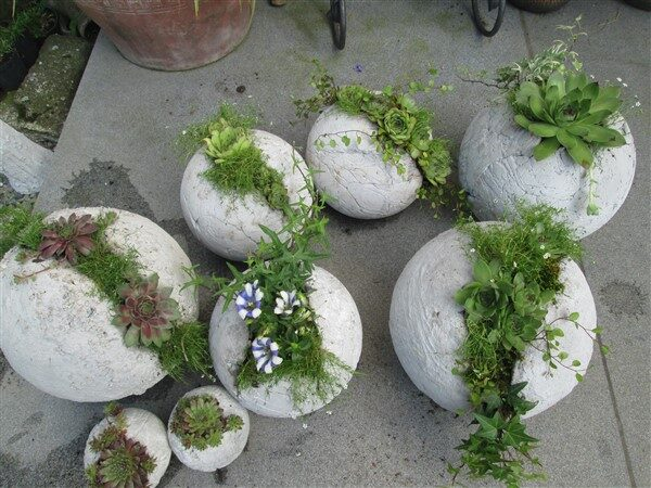 Cement Balloon Planters: Handmade Crafts For Outdoor Decoration