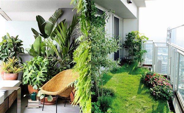 Tropical Balcony Ideas: Create A Greener Area!