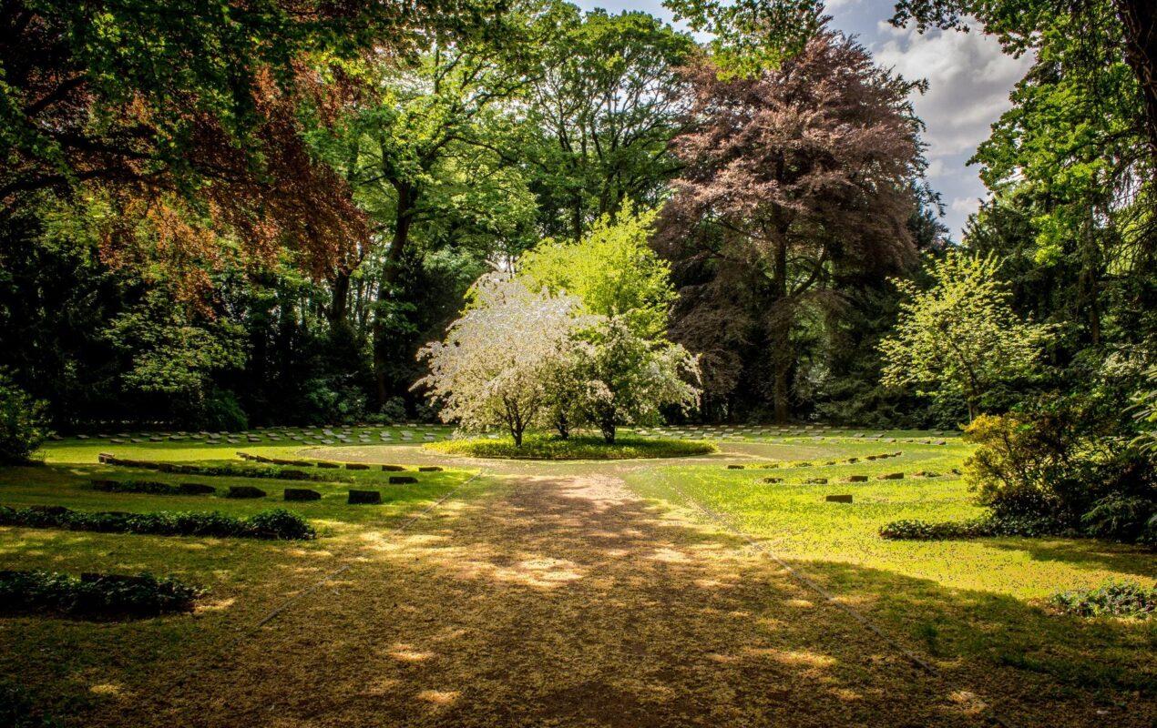5 Creative Landscaping Ideas