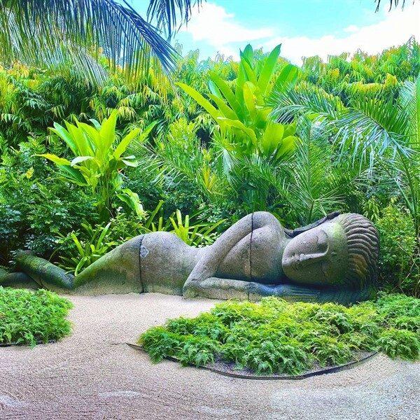 Zen Garden Ideas: How to Create Meditative Spaces in Your Yard