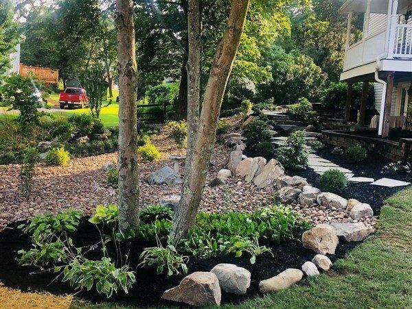 Rain Gardens: Saving the Environment by Creating Gardens