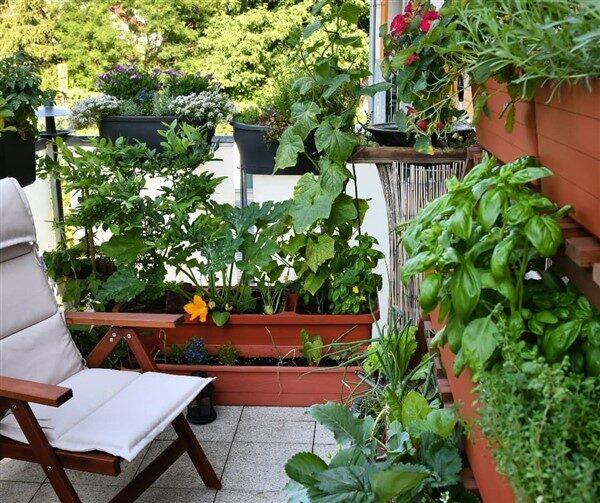 Urban Balcony Garden Ideas That Feel Like In Nature