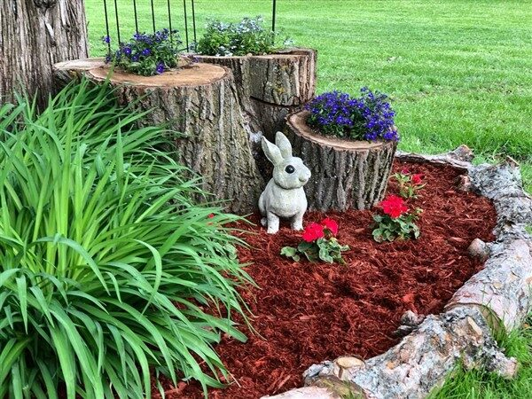 Tree Stump Planter Ideas: Regenerate Tree Stumps!